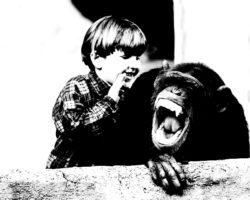 Kid talking to a chimp about the Re:word website