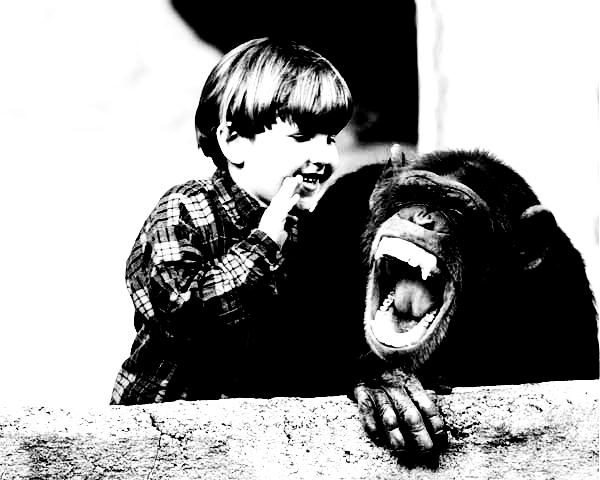 Kid talking to a monkey